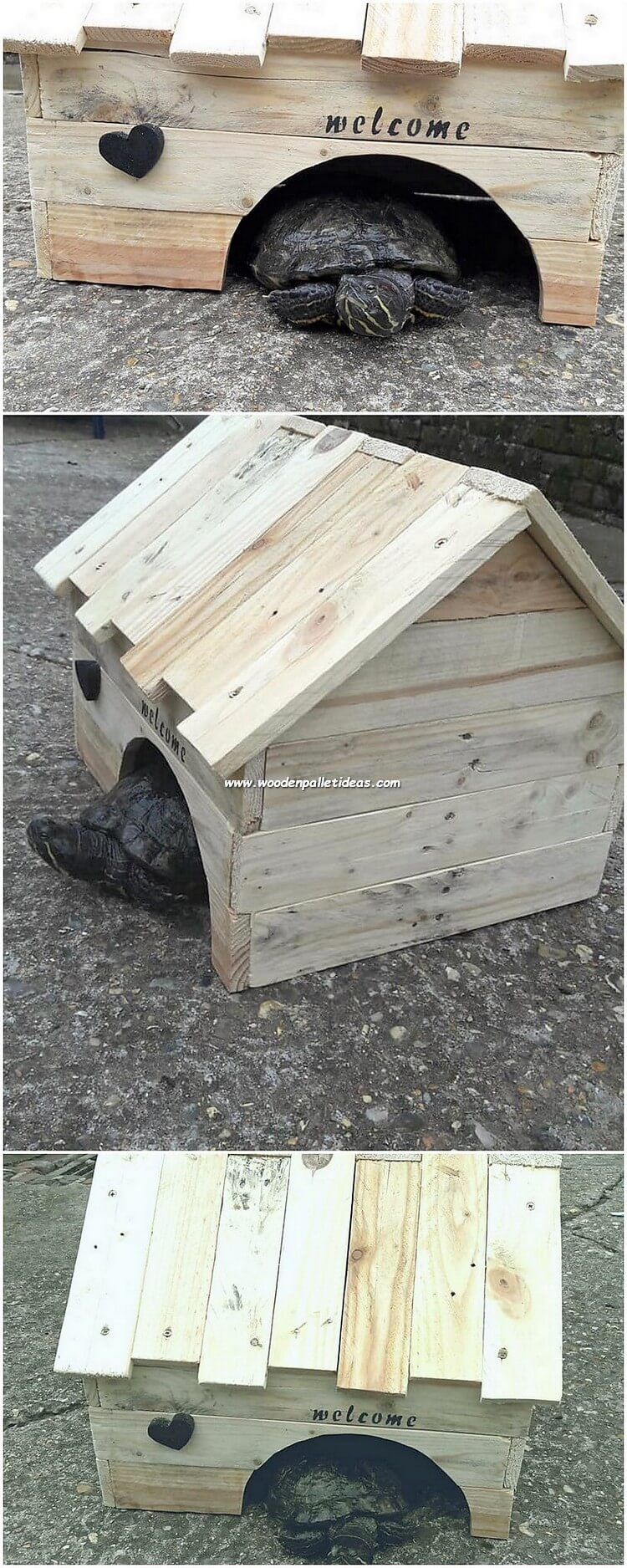 Pallet Turtle House